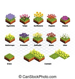 Set of Isometric Tiles Flowers Include Hyacinths, Tulips,...