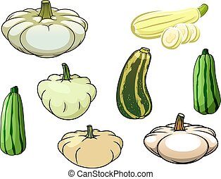 Pumpkin, zucchini and pattypan squash - Green striped...
