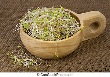 broccoli, radish and clover sprouts in a wooden bowl