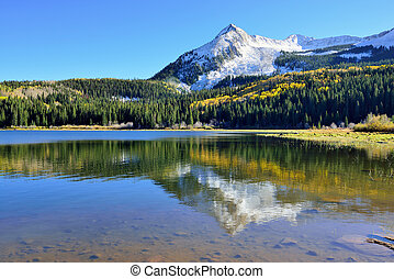 Alpine scenery of yellow and green aspen, snow covered...