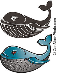 whale - a image of huge whales
