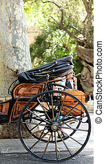 Beautiful close up of carriage in Palma de Mallorca