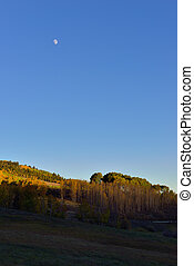 sunset and moon in Colorado during foliage season on Kebler...