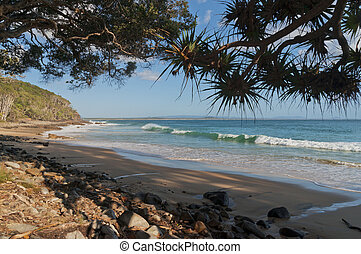 Noosa Tea Tree Bay Morning View - Morning view of Tea Tree...