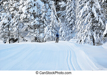 Cross-country skiing in the Marcadau valley