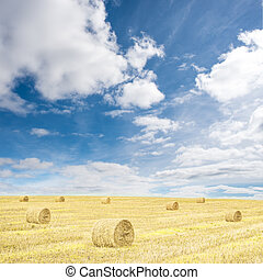 Harvested wheat field with hay rolls and blue sky with clouds