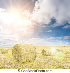 Harvested wheat field with hay rolls and blue sky with clouds and sun