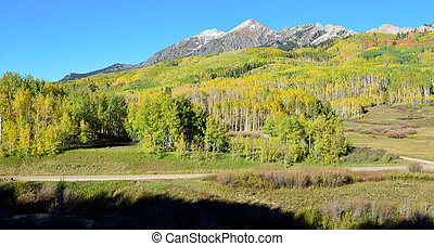 Alpine scenery of yellow and green aspen and snow covered...