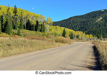 rural road through the yellow and green aspen during foliage...