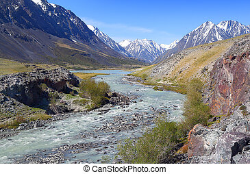 mountain river landscape in Altay - mountain landscape with...