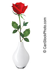 Red Rose in Vase isolated over white