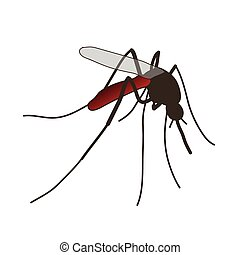 mosquito. a realistic mosquito. - Insect. a realistic...