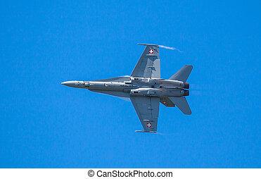 F-18 Hornet - Swiss F-18 Hornet