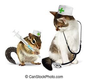 Veterinary concept, funny chipmunk and cat with...