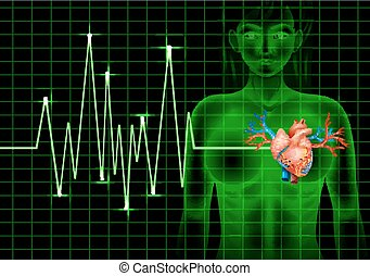 Heartbeat of human and graph