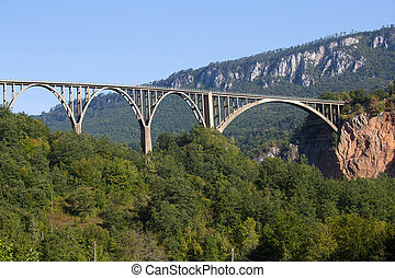 Bridge is a concrete arch bridge over the Tara River in northern Montenegro