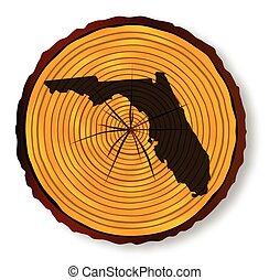 Florida Map On Timber