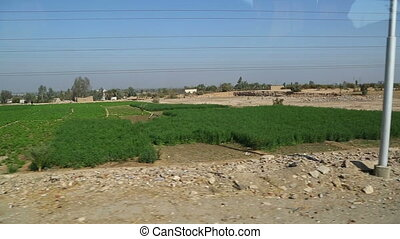 View from car on agricultural fields in Egypt