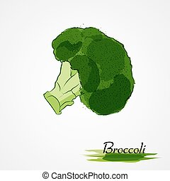 broccoli - Hand drawn vector green broccoli vegetable on the...