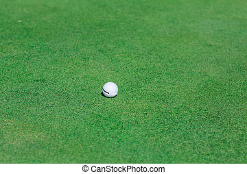 Golf ball on green course field