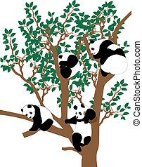 Panda on the tree - Four pandas on tree. Color vector...