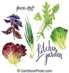 Kitchen garden - Vector set of watercolor sketches. The...