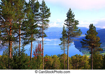 Scandinavian fjord in the mountains - Scandinavian Lake in...