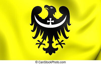 Flag of Lower Silesian Voivodeship, Poland - 3D Flag of...