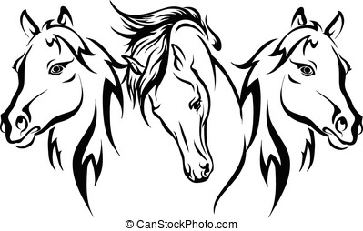Three horses vector