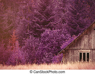 Old house in Ukraine Carpathian mountains Photo with violet...
