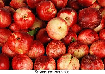 plum - malta plum
