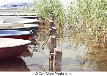 Row Boats at the Lakeshore