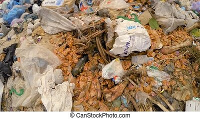 Huge Heap Of Domestic Garbage With Bones At Landfill In...