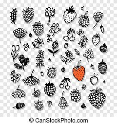 Berries collection, sketch for your design