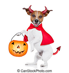 trick or treat dog - halloween devil pug dog with trick or...