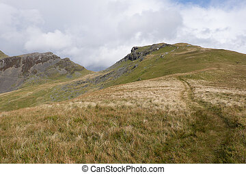 Moelwyn Bach. - A footpath leads through the grassy banks...