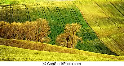 Agricultural landscape - Agricultural vintage landscape with...