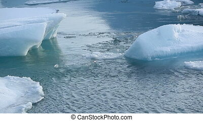 Time lapse of ice blocks melting at glacier lagoon in...