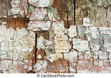 Grunge wood with peeling paint , great background or texture