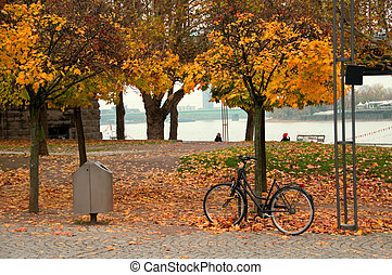 bike in the park - bike left on a tree in a beautiful autumn...