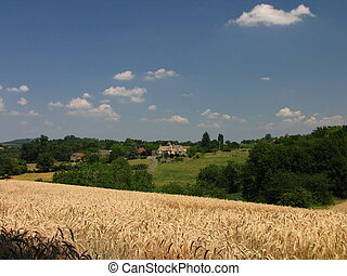 Manor, farm, landscape