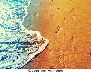 Footprint on the beach - Footprint on the wet sand of the...