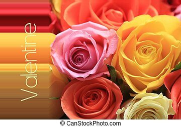 Valentine rose card - A valentine card with mixed color...