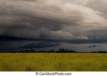 Storm Over the Everglades - Beautiful scene of the Florida...