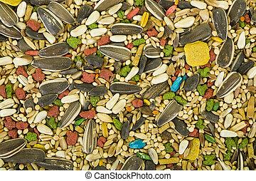 pájaro, semillas, Plano de fondo