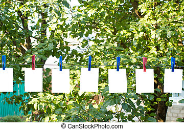 Clothespins on a wire in the yard with white leaves -...