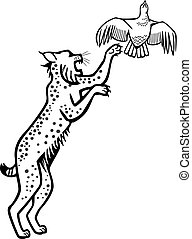 Bobcat chasing a Bird - wildcat leaping after a grouse