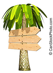 3d board - Wooden signboard on a palm tree Isolated on white...
