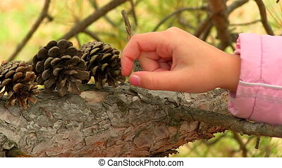 Girl playing with pine cones