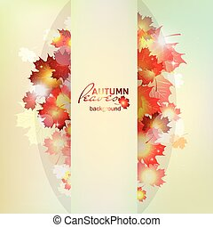 Autumn pattern with colorful translucent leaves. Autumn...